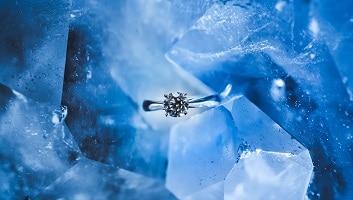 Leader distribuzione diamanti
