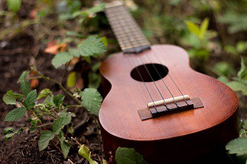 Campagna AdWords per Ecommerce di strumenti musicali